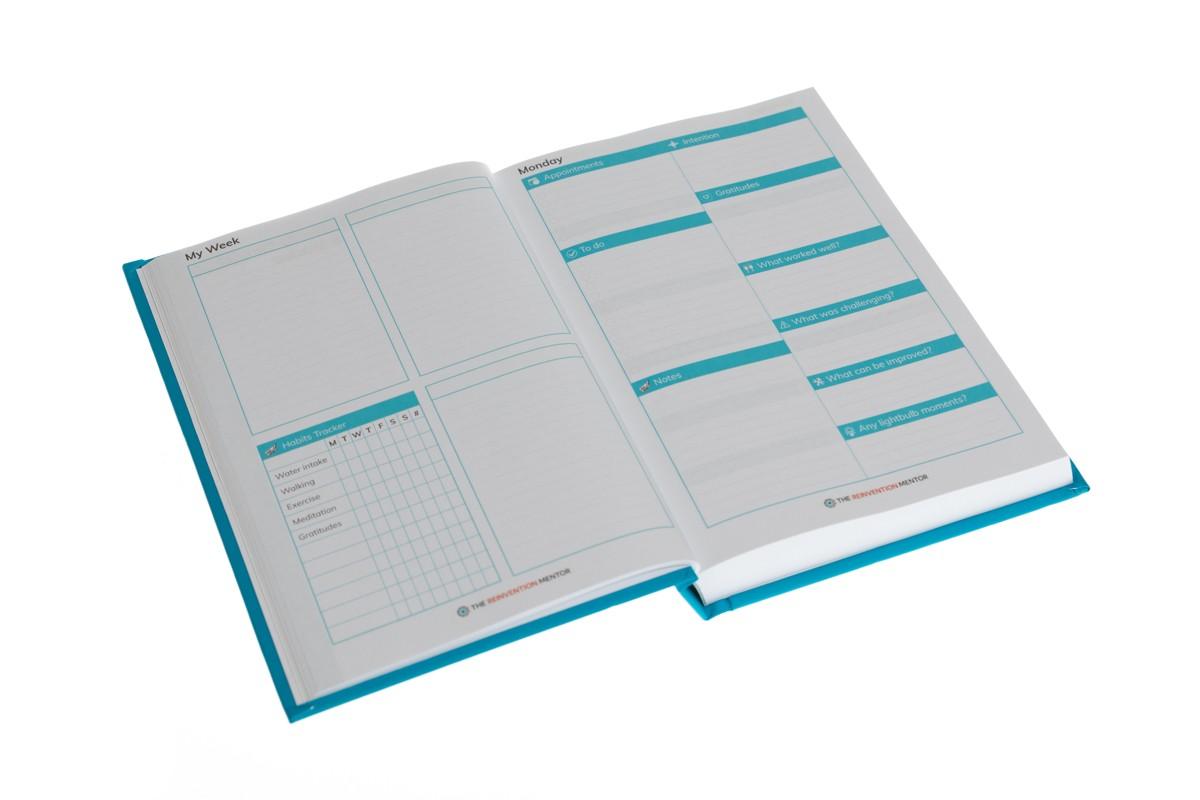 0008-AWP21-reinvention-mentor-print